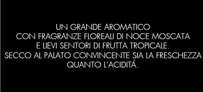 10_MOSCATO-GIALLO_B