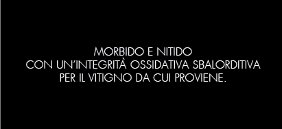 12_VERDICCHIO_B