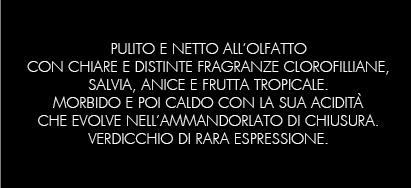 14_FEDERICO_B