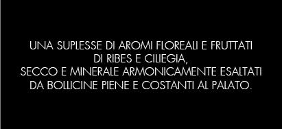 BRUT_ROSEE_B