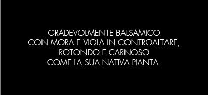 CAPOSTRANO_B
