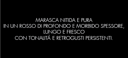 ROSSOPICENO_B